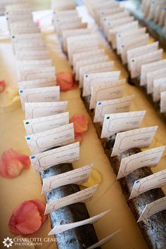 Wedding place cards displayed on aspen logs!