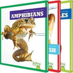 From feathered flyers to scaly swimmers, our world is home to an exciting array of creatures. Explore the animal kingdom and discover each group's unique traits through vibrant photographs and carefully leveled text. Narrative nonfiction is supported by a labeled diagram and picture glossary.