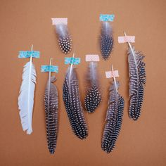 guinea fowl feathers 10x10 print by sugartowne on Etsy, $25.00