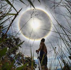 Жители Бразилии увидели светящееся кольцо вокруг солнца