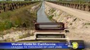 Water cuts in California are taking a big toll on the state's agriculture industry according to one farm group.