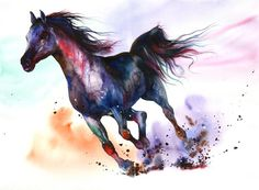 Gorgeous running Arabian Horse - Water Colors & Graphics - A Showcase of Artist Peter Williams - 5