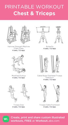 Chest & Triceps · WorkoutLabs Fit Chest & Triceps · WorkoutLabs Fit,fitness Chest & Triceps: my custom printable workout by goals motivation training workouts plan Chest And Tricep Workout, Chest Workout Women, Gym Workout Plan For Women, Triceps Workout, Chest Workouts For Women, Tricep Workout Women, Back And Bicep Workout, Gym Workouts Women, Best Chest Exercises