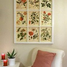 These botanical prints were downloaded for free and framed in a salvaged window. Instructions are at http://www.craftynest.com