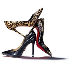 The ladylike pump gets a fierce makeover in glossy snakeskin and wild animal print.