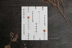 Floral – 1 Postcard - Botanical Illustrations – a unique product by thebluerabbithouse on DaWanda