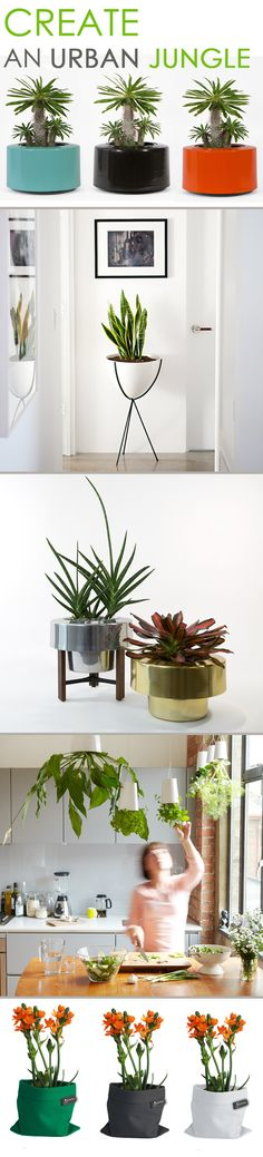 Are you an urban jungle blogger or just a lover of luscious greenery in your home or apartment? We have curated a collection just for you! Find some of our most unique and stylish planters that are perfect for urban spaces; both big and small!