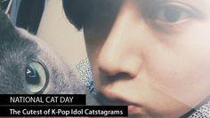The Cutest of K-Pop Idol Catstagrams! | http://www.allkpop.com/article/2014/10/the-cutest-of-k-pop-idol-catstagrams