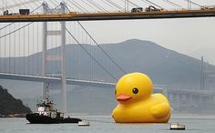Rubber Duck in Hong Kong by Florentijn Hofman