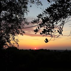 Tramonto toscano #myshot  #instagood #instadaily #instalike #estate #summer #photooftheday #tuscanypeople #toscana #tramonto #sunshine #Tuscany #Italy #Italia #instaitalian