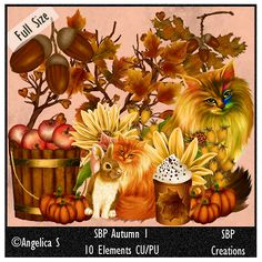 SBP Creations: SBP Autumn 1