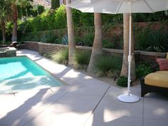 a Palm Springs poolside gardenscape