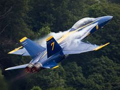 Hornet Blue Angel