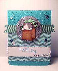 "Newton's Nook ""Cat out of the Bag"" Birthday Card 