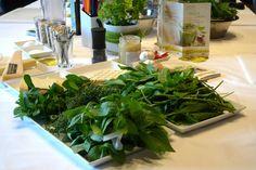 Im Pesto-Himmel beim Food Blog Day - einfachleicht