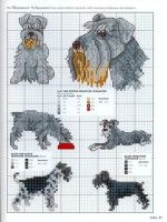 """Gallery.ru / tymannost - Альбом """"Picture Your Pet"""""""