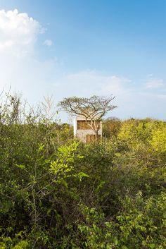 live here | puerto escondido, mexico | aranza de ariño | photo: camila cossio