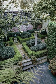 Pretty private garden with boxwoods