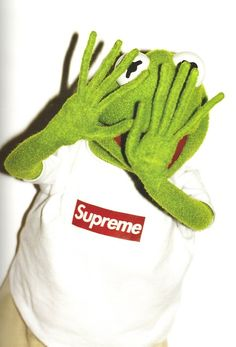 Kermit the Frog for Supreme photographed by Terry Richardson
