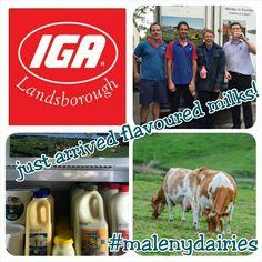 Landsborough iga Flavored Milk, Baseball Cards, Sports, People, Hs Sports, Sport, People Illustration, Folk