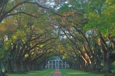 Louisiana plantations - search in pictures