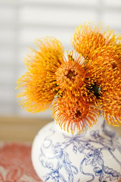 Picnic Snacks, Tea Party Birthday, Orange Flowers, Flower Photos, High Tea, Flower Power, Planting Flowers, Wedding Flowers, Photo Galleries