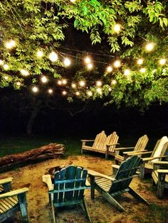 Globe lights in the trees and I need more chairs.