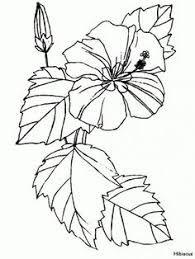 image result for flora de puerto rico coloring pages - Free Coloring Pages Of Puerto Rico