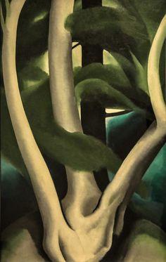 Georgia O'Keeffe (Am.1887-1986), Birch and Pine Tree N°1, 1925, huile sur toile, Philadelphia Museum of Art