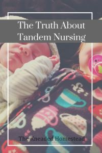 The Truth About Tandem Nursing - The Kneaded Homestead - breastfeeding, breastfed, newborn, toddler, extended breastfeeding, natural parenting, baby led weaning, VBAC, natural birth, pregnancy, pregnant
