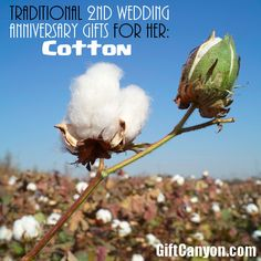 Cotton Wedding Anniversary Gifts for Her: This gift ideas list is a mix of keepsake gifts, experience gifts and DIY gifts. You just choose what you like.