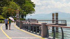 Shenzhen Bay -