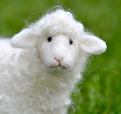 Bear Creek Felting Lamb Kit and online class - must add to my bucket list!