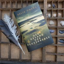 Kindle, Ebooks, Cover, Art, Singing, River, Art Background, Kunst, Performing Arts