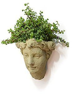 Amazon.com : Designer Stone Lady's Head Cast-Stone Wall Planter, Antique Stone Color : Garden & Outdoor
