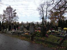 patrząc w jedną stronę: Cmentarz Wolski