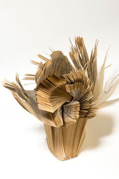 In the spirit of books these works speak in a few images what volumes, literally, cannot.
