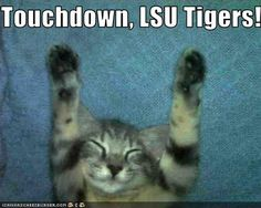 Touchdown, LSU Tigers!