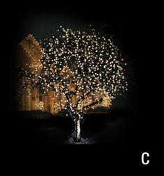 Christmas Décor of Ottawa | Lighting Sample for a Canopy Wrap