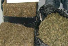 PN decomisa 582.1 gramos de marihuana en La Vega | NOTICIAS AL TIEMPO
