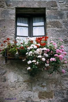 ventana.jpg 335×500 píxeles
