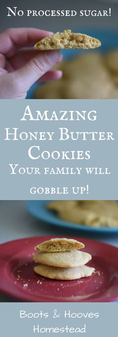 Amazing Honey Butter Cookies (your family will gobble up!) - Boots & Hooves Homestead