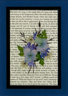 Pressed Flower Greeting Card Altered Book Jane Eyre