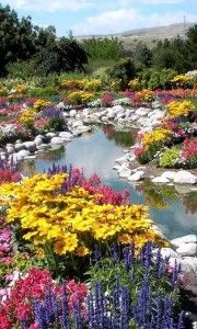 Stream of flowers Flowers Garden Love