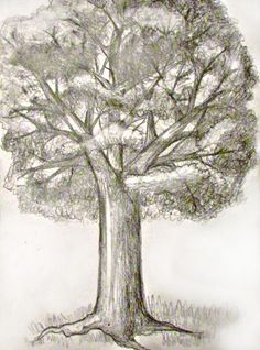 Learn To Draw How To Draw A Tree: Step by step tutorial with photos showing how to draw seven different trees. - How To Draw A Tree: Step by step tutorial with photos showing how to draw seven different trees. Tree Drawings Pencil, 3d Drawings, Landscape Drawings, Cool Landscapes, Drawing Skills, Drawing Techniques, Drawing Ideas, Drawing Step, Drawing Lessons