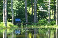 Pond Area at Bedrock Gardens.