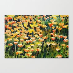 California Poppies Stretched Canvas by Denise Comeau California Poppy, Poppies, Art Prints, Wall Art, Stretched Canvas, Canvases, Artwork, Painting, Art Impressions