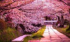 Quando menos percebemos, o dia passou e nós estávamos ocupados demais para admirar a beleza da vida. Vamos mudar isso hoje?