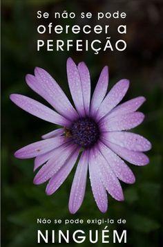 Não se pode oferecer a perfeição... Mas pode-se ser muito exigentes com nosso modo de ser, estar e agir...