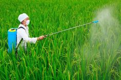 Why World Health Organization Retract From Study Linking Monsanto to Cancer - Photo 2